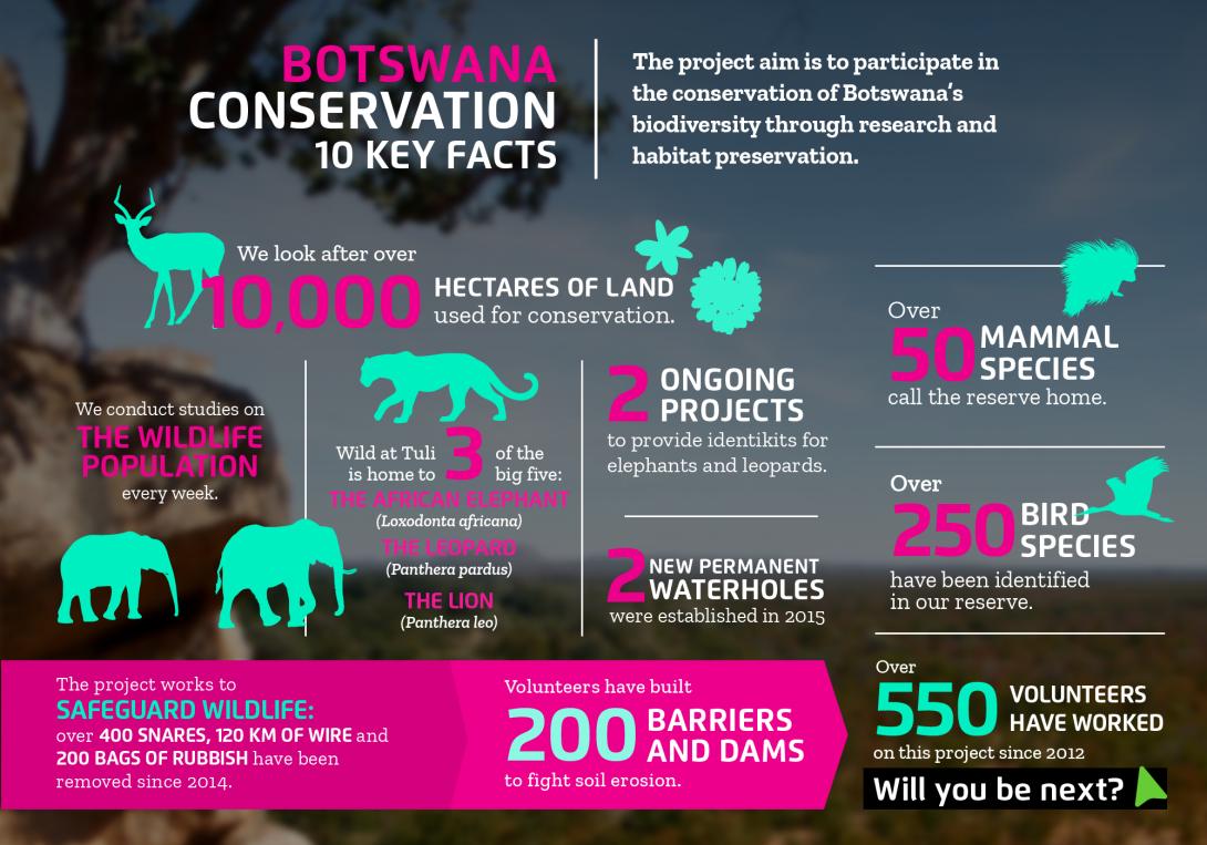 Faits intéressants sur l'écovolontariat au Botswana avec Projects Abroad